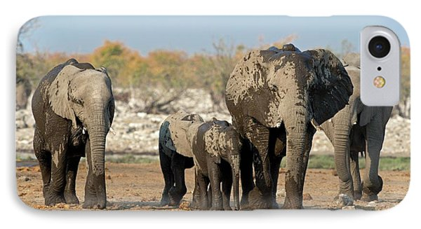 A Herd Of African Elephants IPhone Case