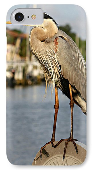A Heron In The Marina IPhone Case