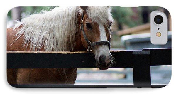 A Hilton Head Island Horse Phone Case by Kim Pate