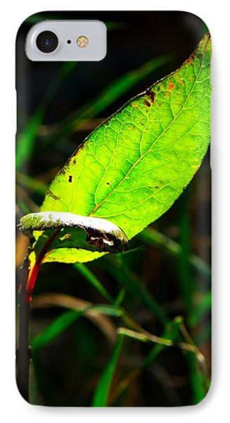 IPhone Case featuring the photograph A Leaf... by Tim Fillingim
