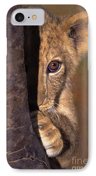 A Lion Cub Plays Hide And Seek Wildlife Rescue IPhone Case by Dave Welling