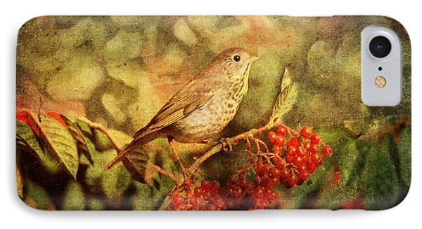 A Little Bird With Plumage Brown IPhone Case
