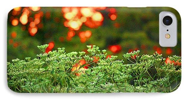 A Love Bug Sunset IPhone Case