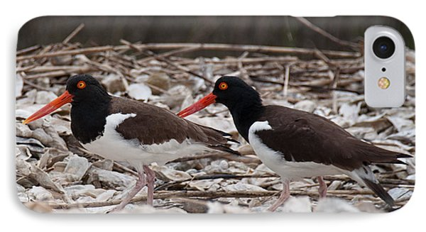 A Mated Pair Of Oyster Catchers IPhone Case by John Black