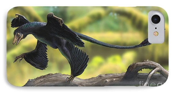 A Microraptor Perched On A Tree Branch IPhone Case by Sergey Krasovskiy