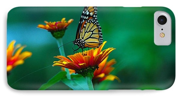 IPhone Case featuring the photograph A Monarch by Raymond Salani III
