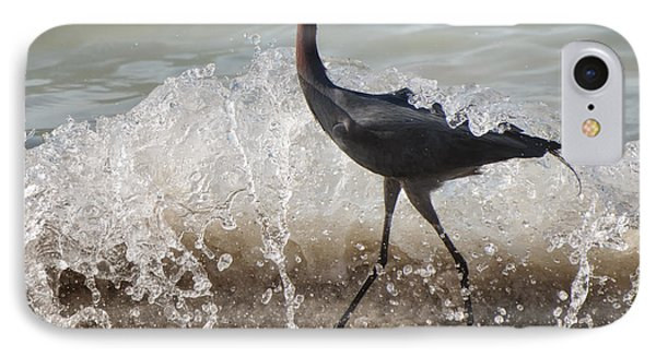 A Morning Stroll Interrupted IPhone Case by Gary Slawsky