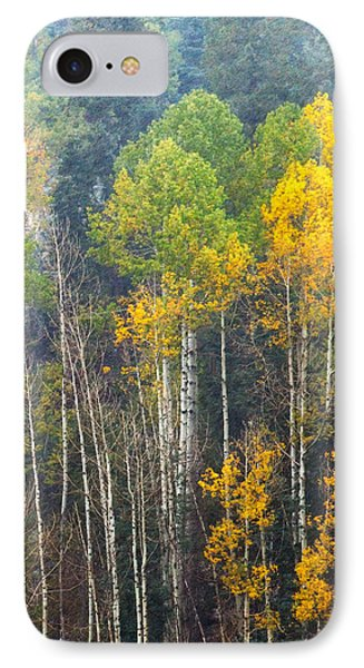 A Muted Fall IPhone Case
