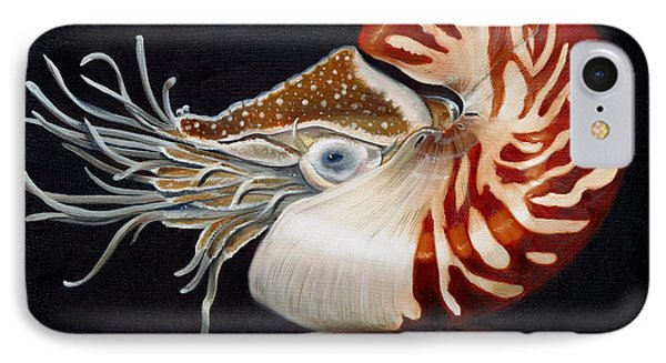 A Nautilus Study IPhone Case by Phyllis Beiser
