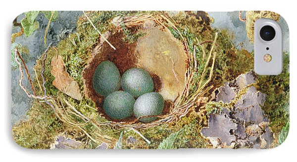 A Nest Of Eggs, 1871 IPhone Case by Jabez Bligh