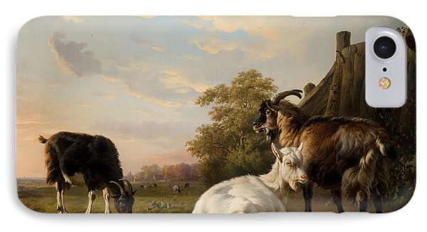 A Pack Of Goats IPhone Case