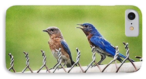 Nesting Bluebirds IPhone Case by Heidi Hermes