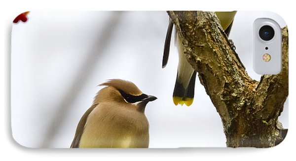 IPhone 7 Case featuring the photograph A Pair Of Cedar Waxwings by Ricky L Jones