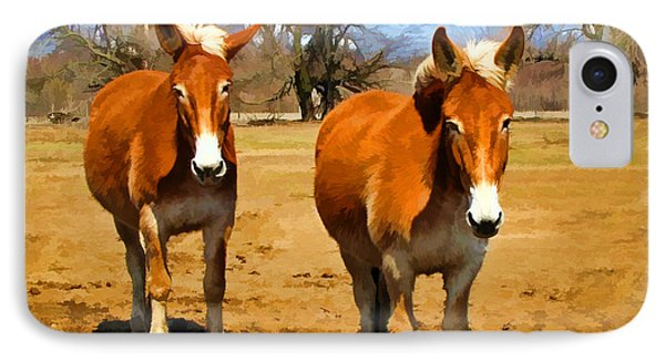 A Pair Of Mules  Digital Paint IPhone Case by Debbie Portwood