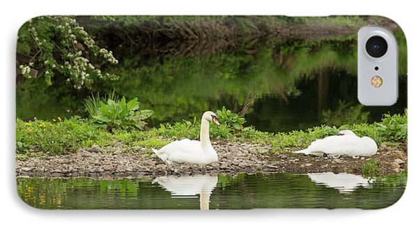 A Pair Of Mute Swans IPhone Case by Ashley Cooper