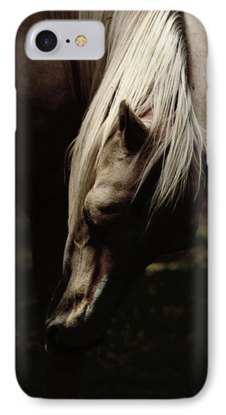 A Pale Horse IPhone Case by Joseph G Holland