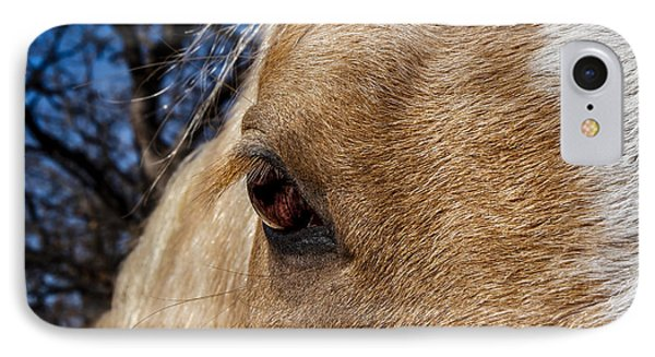 A Palomino's Eye. IPhone Case