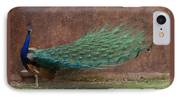 A Peacock IPhone Case by Ernie Echols