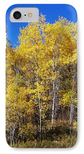 A Perfect Fall Day IPhone Case by Sheila Byers