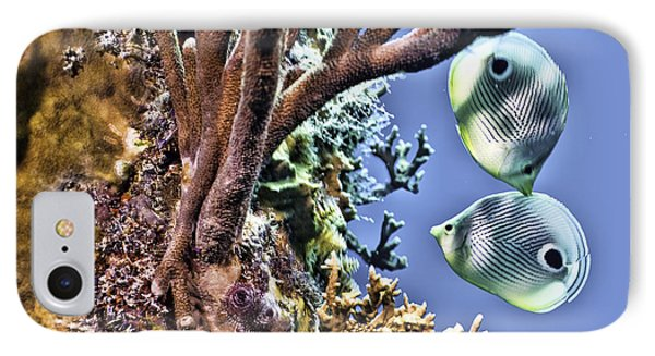 IPhone Case featuring the photograph Two Butterfly Fish And Coral Reef by Paula Porterfield-Izzo