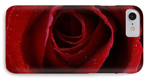 IPhone Case featuring the photograph A Perfect Rose by Keith Hawley
