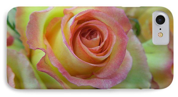 A Perfect Rose IPhone Case by Renee Trenholm