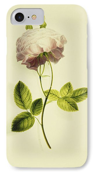 A Pink Rose IPhone Case by James Holland
