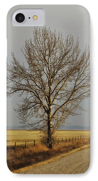 A Poplar Tree By The Side Of A Gravel Phone Case by Roberta Murray