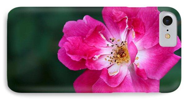 A Pretty Pink Rose Phone Case by Sabrina L Ryan