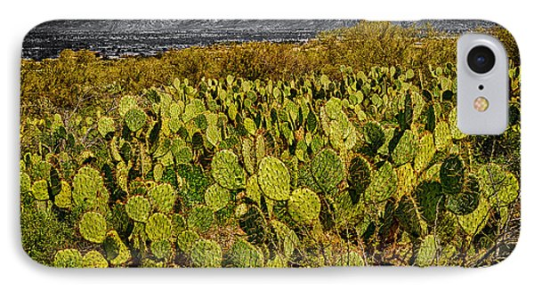 IPhone Case featuring the photograph A Prickly Pear View by Mark Myhaver
