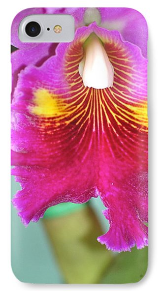 A Purple Cattelaya  Orchid IPhone Case by Lehua Pekelo-Stearns