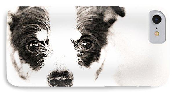 A Rat Terrier ... Mix IPhone Case