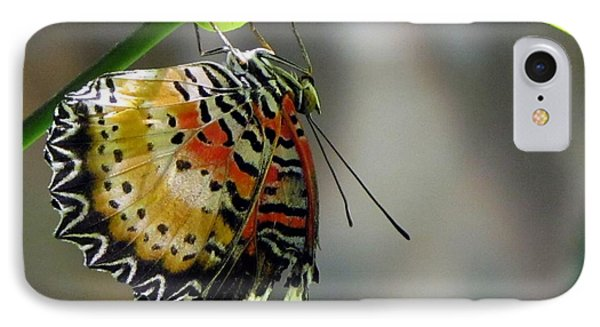 A Real Beauty IPhone Case by Jennifer Wheatley Wolf