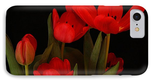 A Red Tulip Day IPhone Case by Roena King