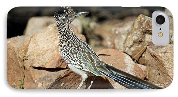 A Road Runner Pauses Momentarily IPhone 7 Case