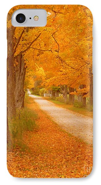 A Romantic Country Walk In The Fall Phone Case by Lingfai Leung
