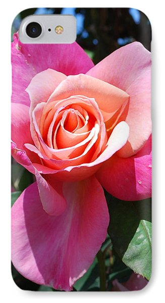 A Rose By Any Other Name IPhone Case by Richard Hinger