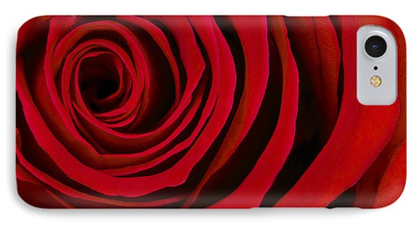 A Rose For Valentine's Day IPhone Case by Adam Romanowicz