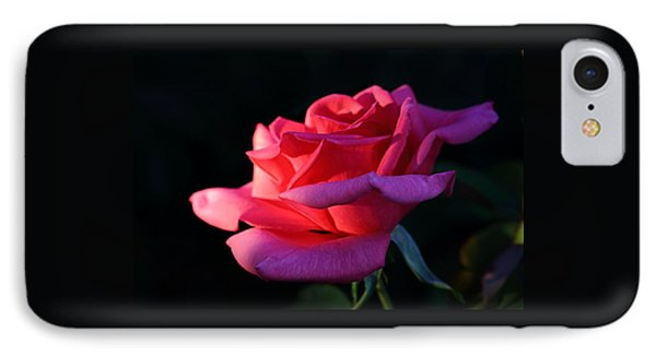 IPhone Case featuring the photograph A Rose Is A Rose by David Andersen
