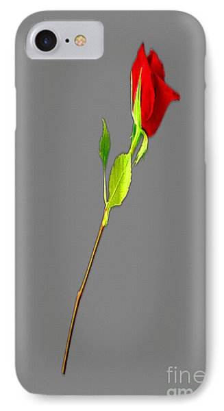 A Rose Is A Rose Is A Rose IPhone Case by Tina M Wenger