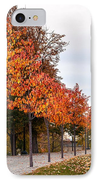 A Row Of Autumn Trees IPhone Case by Denise Bird