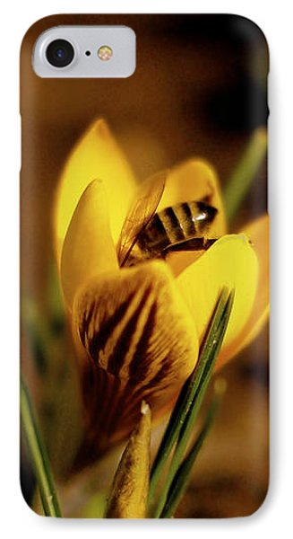 A Sign Of Spring IPhone Case by Rona Black