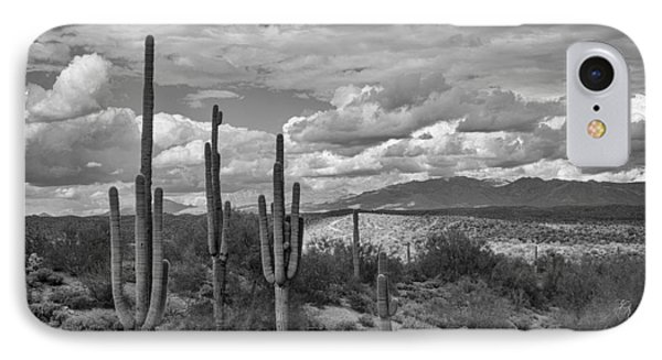 A Sonoran Winter Day In Black And White  IPhone Case by Saija  Lehtonen