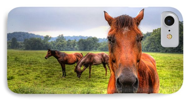A Starring Horse 2 IPhone Case by Jonny D