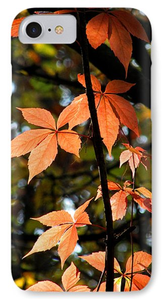 A Strand Of Leaves I IPhone Case by Kimberly Mackowski