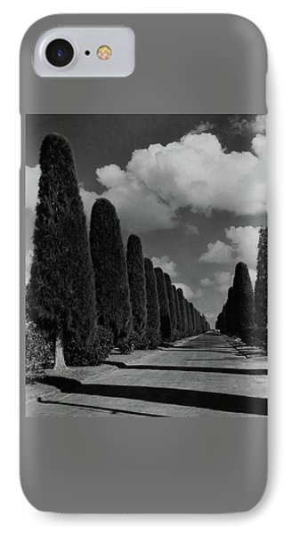 A Street Lined With Cypress Trees IPhone Case by John Kabel