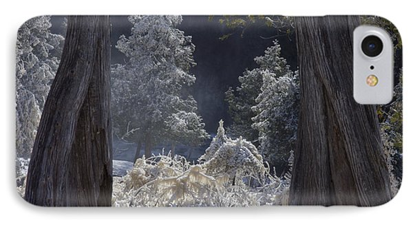 IPhone Case featuring the photograph A Twisted Fairy Tale by Mary Amerman