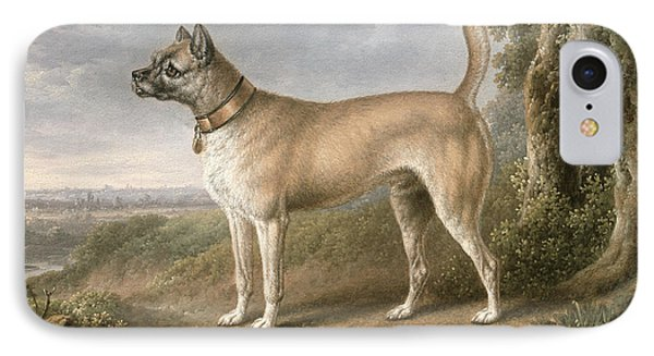 A Terrier On A Path In A Wooded Landscape IPhone Case by Charles Towne