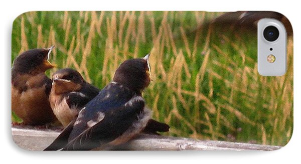 A Third Baby Barn Swallow Has Joined The Lunch Crowd IPhone Case