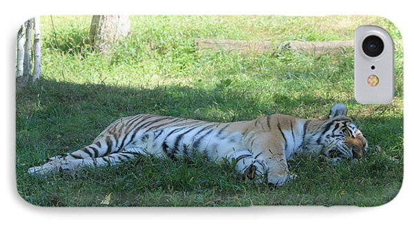 A Tiger Sleeps In The Shade IPhone Case